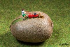 H0 Kleine Helden Kiwi - Andy Ilmberger
