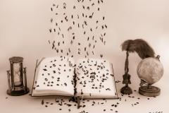 Fliegende Buchstaben - Andy Ilmberger
