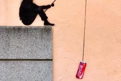 Regensburg Coke-Angler - Andy Ilmberger
